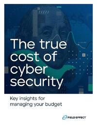 eBook Cover - The True Cost of Cyber Security